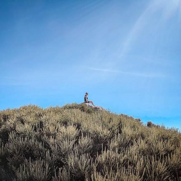 Teneriffa Sehenswürdigkeiten Teide Mirador Teide Nationalpark