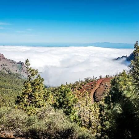 Teneriffa Sehenswürdigkeiten Teide Nationalpark Mirador de la Crucita