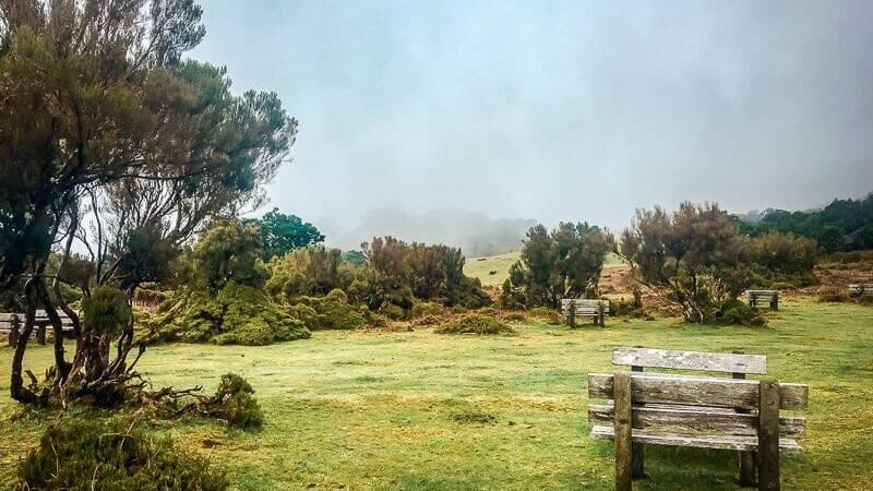 Portugal Madeira Fanal Wanderparkplatz Wandern