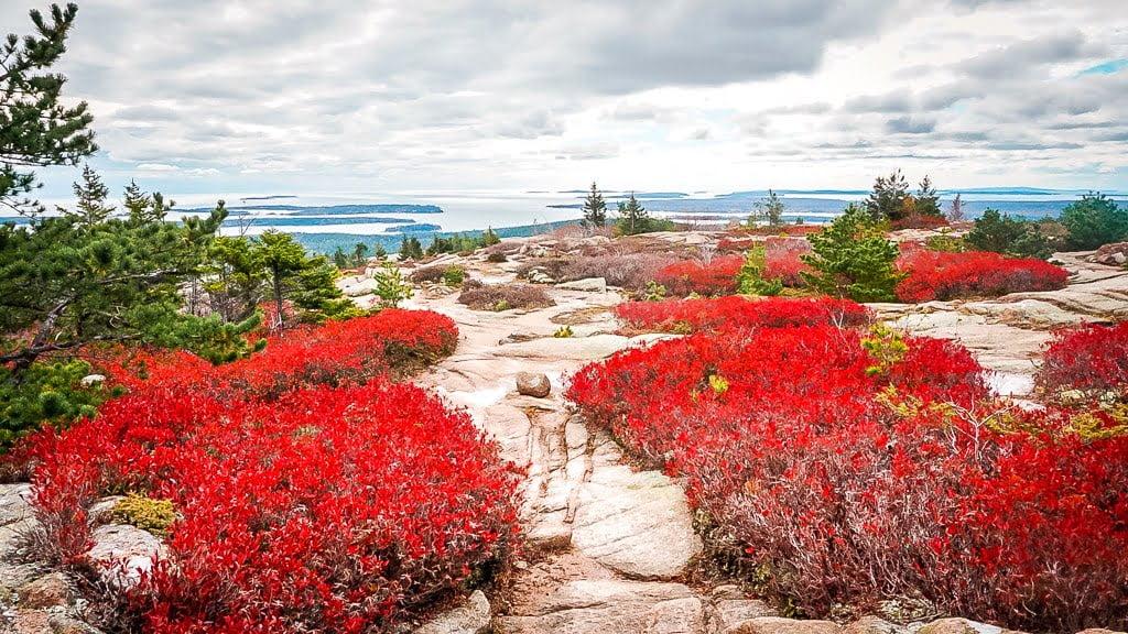 Acadia National Park Indian Summer Wanderung Penobscot Mountain Gipfel wandern Ausblick Landschaft