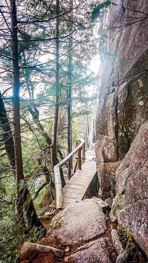 Acadia National Park Wandern Indian summer Penobscot Mountain Wanderung Wanderweg Wald