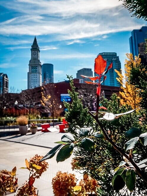 Boston USA Rose Kennedy Greenway Skyline