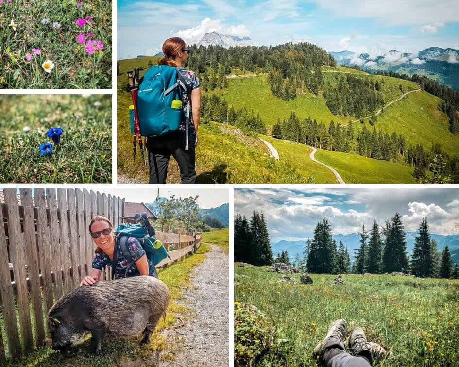 Wilder Kaiser Koasa Trail Wandern Etappe 4 Eindrücke