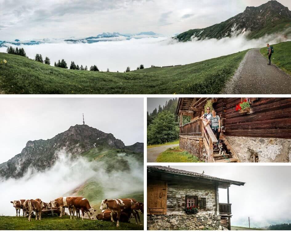 Wilder Kaiser Koasa Trail Etappe 5 Kitzbüheler Horn