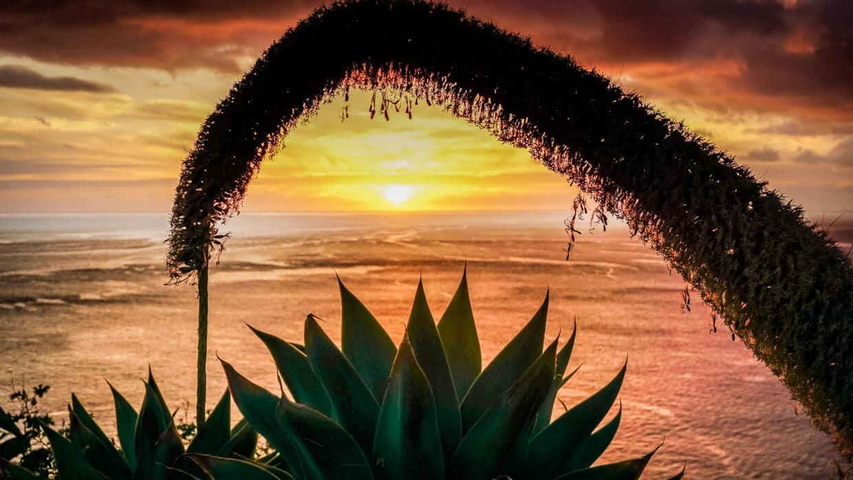 Portugal Madeira Sehenswürdigkeiten Ribeira Brava Sonnenuntergang