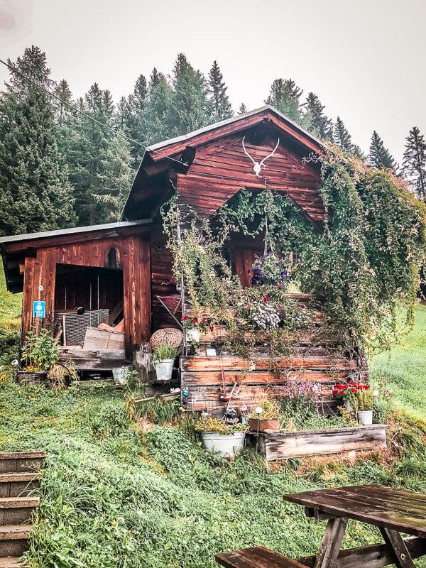 Die urige Goldberghütte im Mölltal Alpe Adria Trail Etappe 5