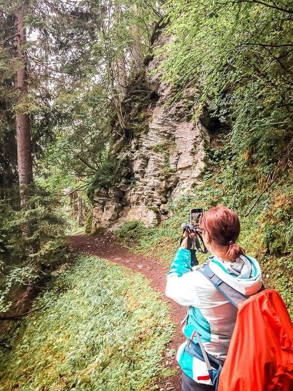 Rollbahn Pfad im Wald in der Großfragant im Mölltal