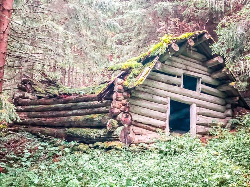 Mölltal Holzhütte im Wald Alpe Adria Trail Etappe 5