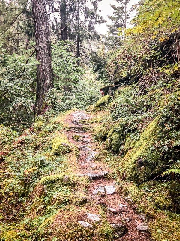 Waldpfad in der Rabischschlucht bei Mallnitz im Mölltal