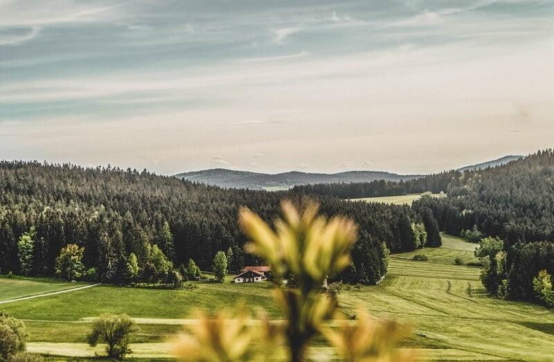 Fernwanderwege Goldsteig in Bayern