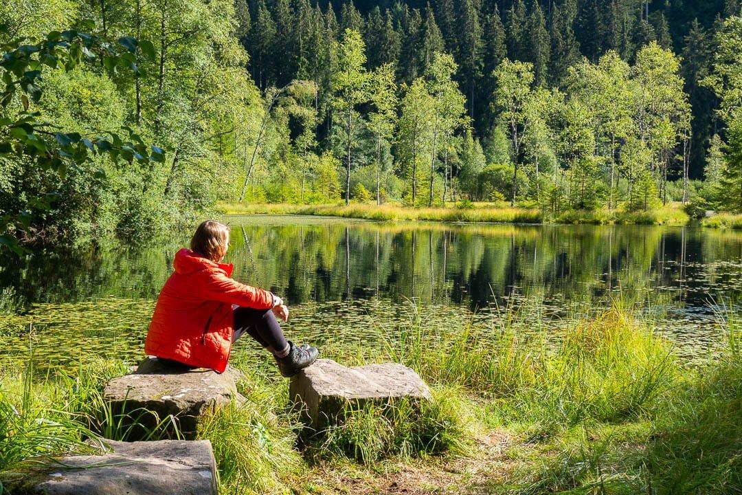 Mehrtagestour im Schwarzwald mit Waldidylle und Seeblick