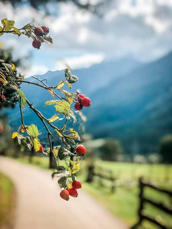 Idylle auf dem Alpe Adria Trail bei Mallnitz