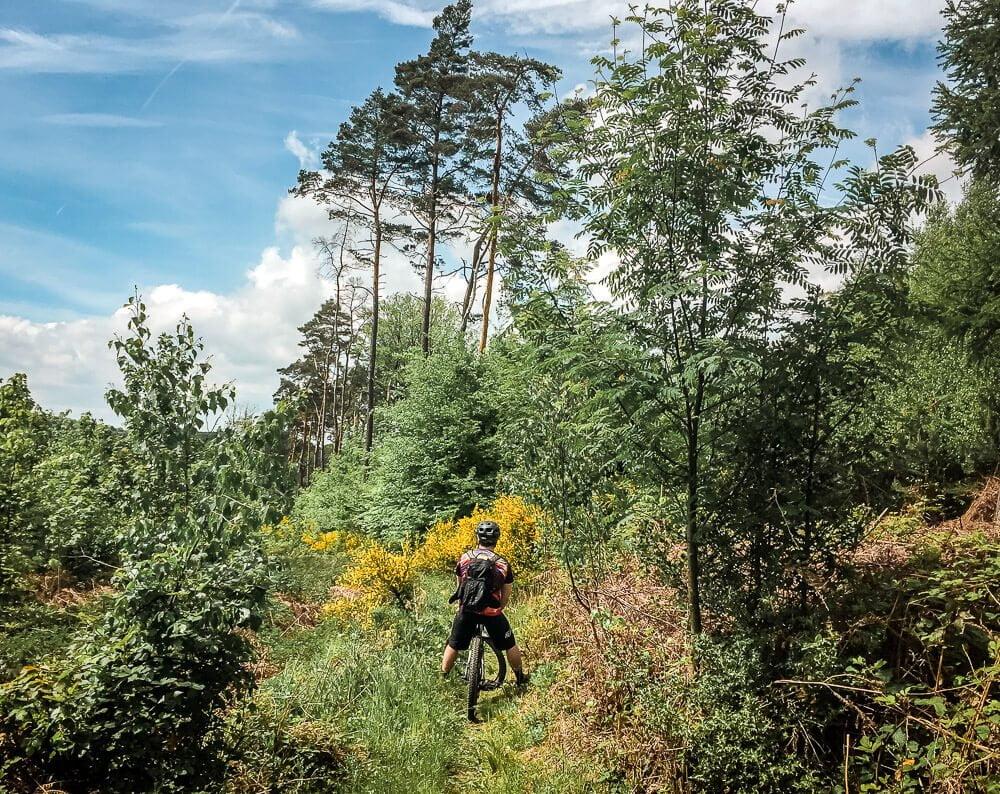 Mountainbike Trail in der Elfringhauser Schweiz im Ruhrgebiet