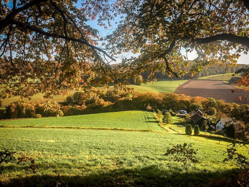 Idyllische Hügellandschaft in der Elfringhauser Schweiz