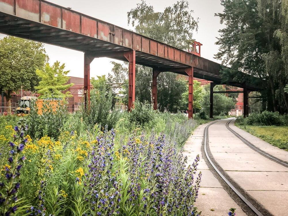 Kontrast aus Industriekultur und Natur an der Zeche Zollverein in Essen