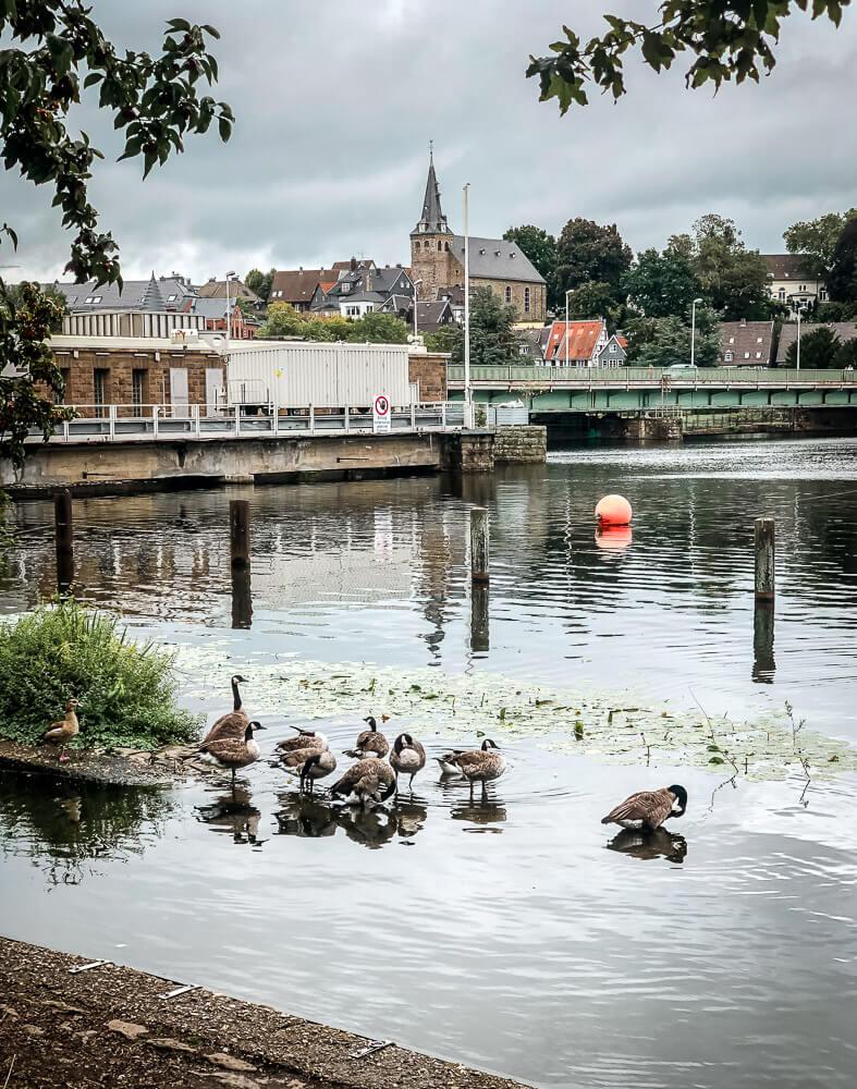 Kettwiger Stausee im Ruhrgebiet