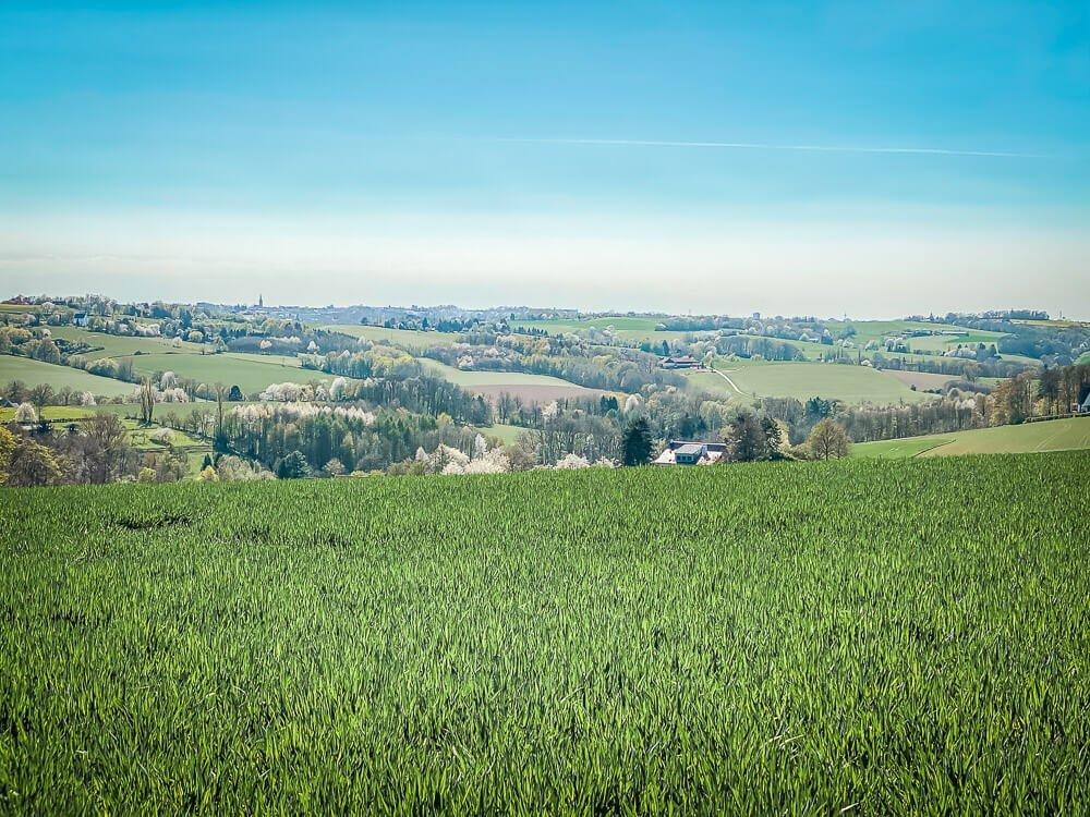 Grüne Landschaftsidylle beim Wandern im Ruhrgebiet