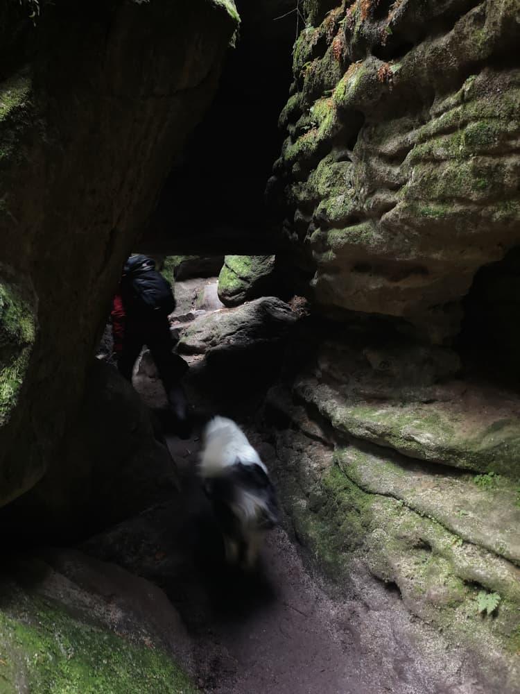 Klettern durch Felsformationen im Teufelsgrund in der Sächsischen Schweiz