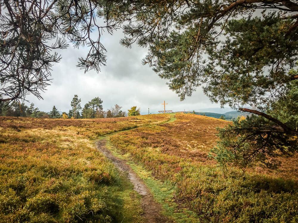 Weg durch die Usseler Heide zum Gipfelkreuz der Kahlen Pön