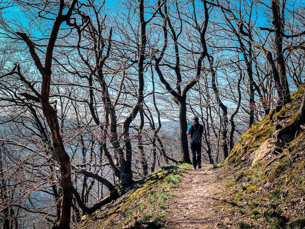 Höhenpfad im Wald bei Iserlohn Nachrodt