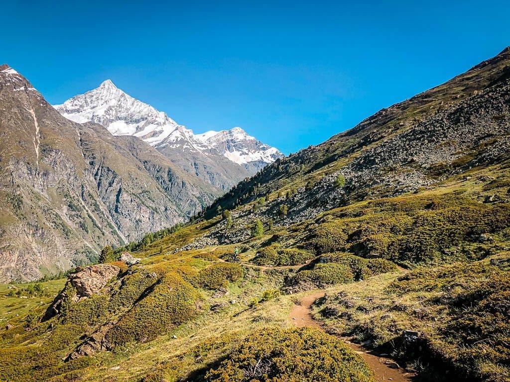 Zermatt Biken - Blumenweg und Bergpanorama von Blauherd nach Sunnegga