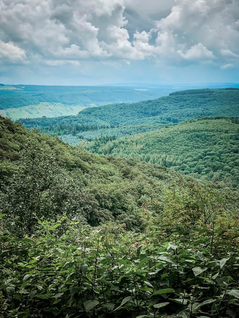 Mountainbiken in den Wäldern zwischen Mosel und der Eifel