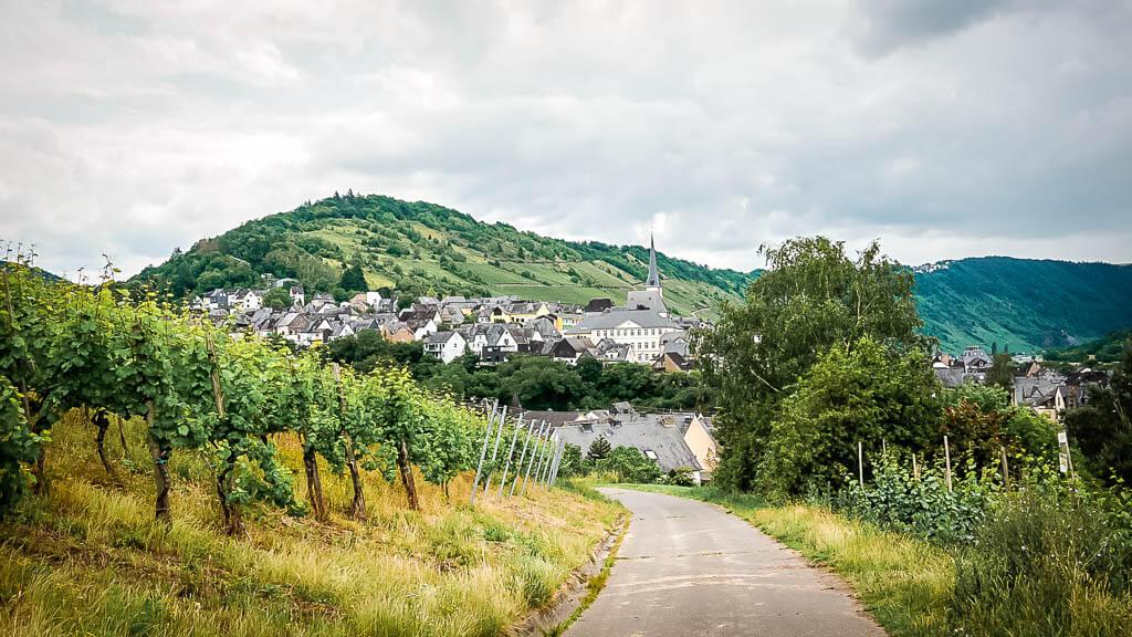 Ein Blick zurück nach Enkirch auf dem Weg durch die Weinberge nach Reil