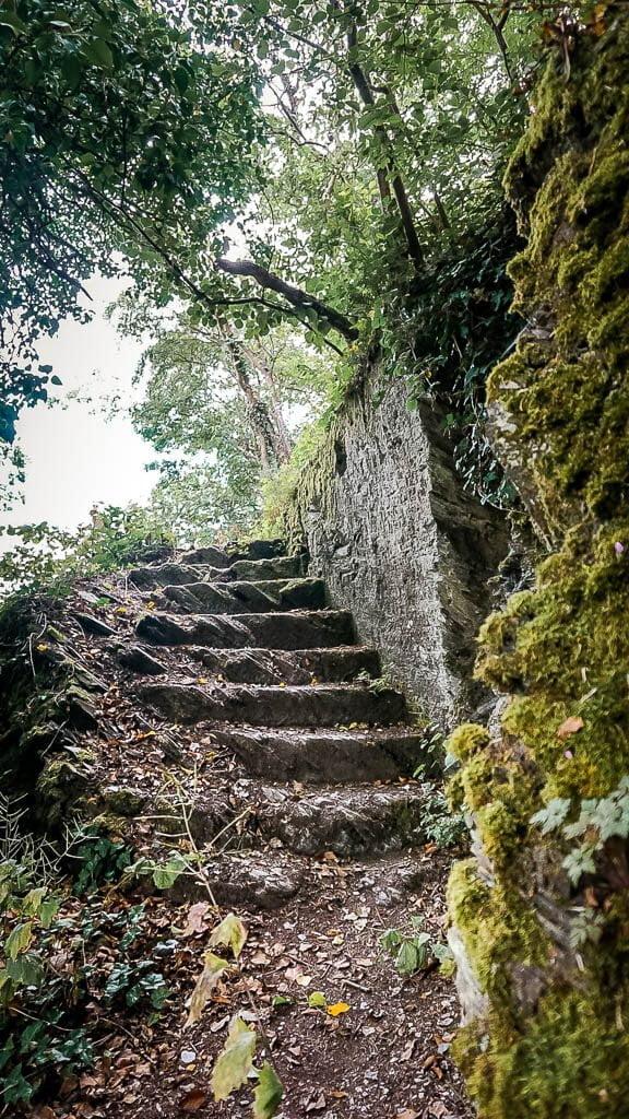 Wandern an der Mosel auf dem Moselsteig Etappe 13 Felsenpfad