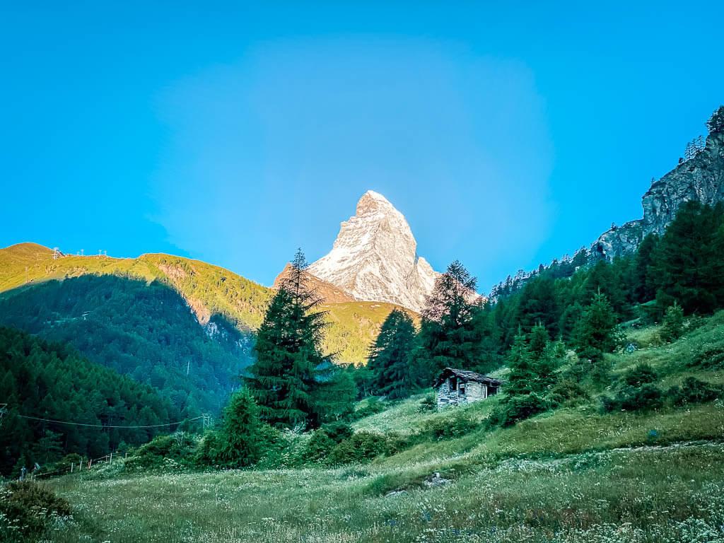 Das Matterhorn im Morgenlicht - Almenidylle am Ortsausgang von Zermatt
