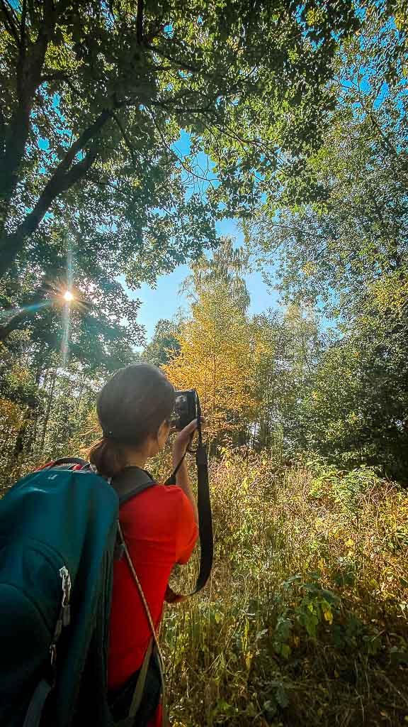 Couchflucht fotografiert Herbstbäume auf dem Harzer Grenzweg im Naturpark Südharz