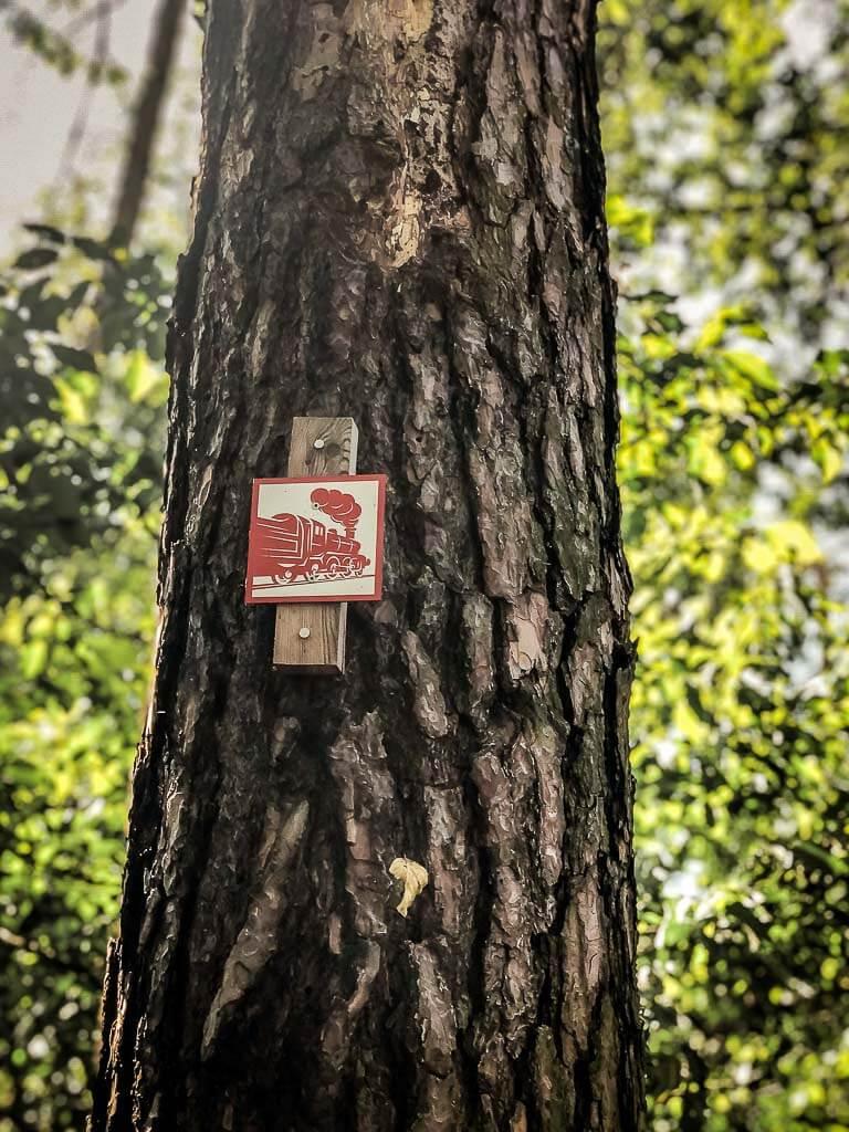 Markierung Südharzer Dampfloksteig an einem Baum im Naturpark Südharz
