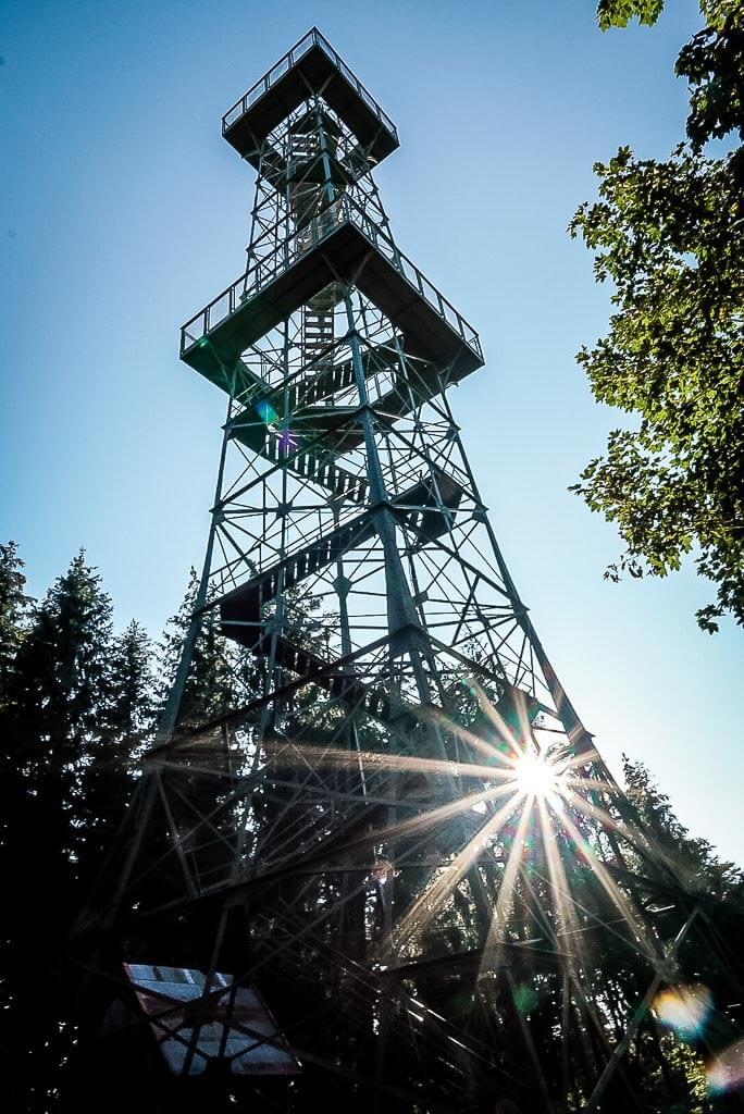 Poppenbergturm im Sonnenlicht im Naturpark Südharz