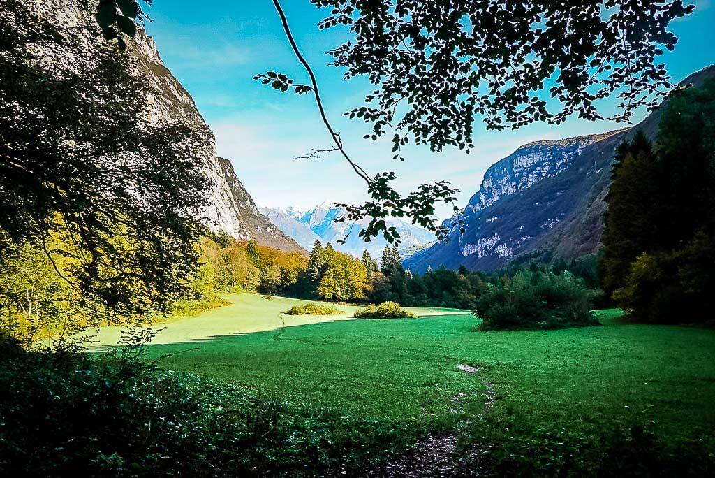 Grüne Wiese und Berglandschaft im Lomasontal im Trentino