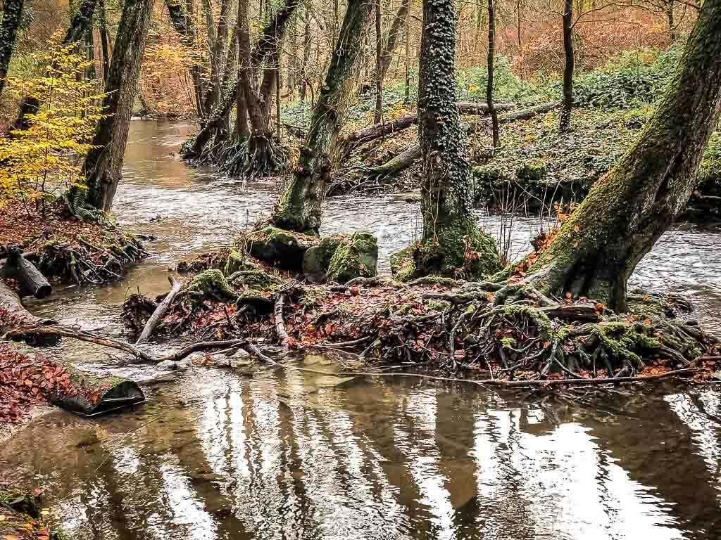 Fluss Duessel beim Wandern im Neandertal