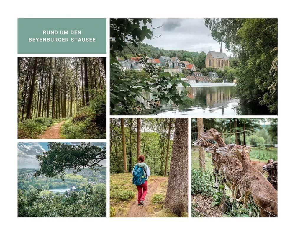 Wandern Bergisches Wald Wanderwege um den Beyenburger Stausee in Wuppertal