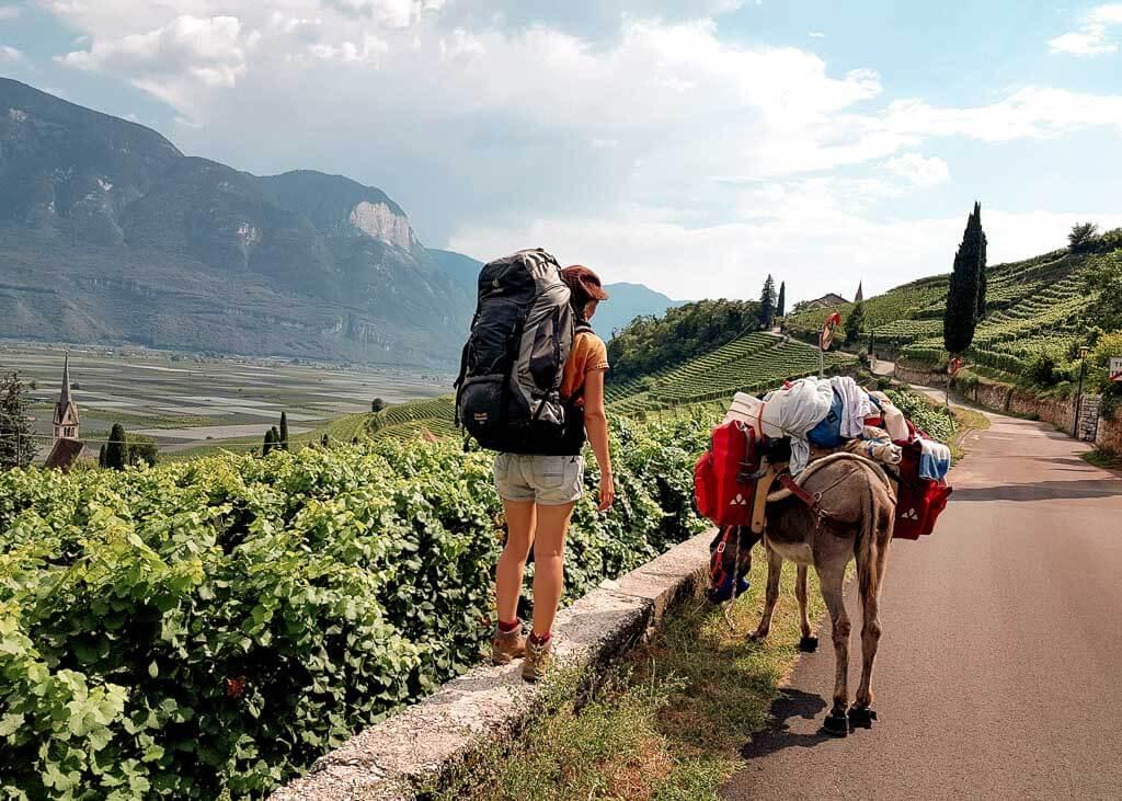 Wandern mit Esel Jonny auf der Via Claudia Augusta in Südtirol