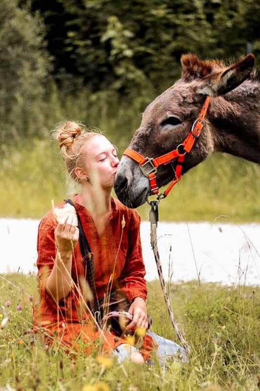 Wandern mit Esel Jonny und Lotta Lubkoll auf einer Blumenwiese