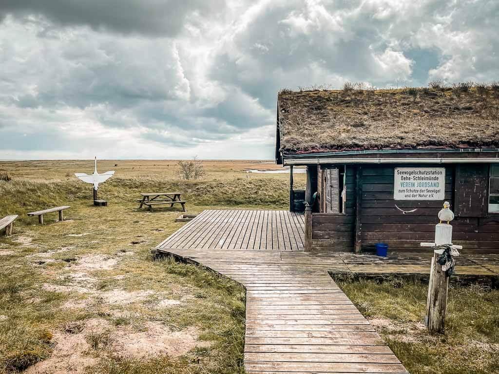 Ostseefjord Schlei - Seevogelschutzstation bei Maasholm