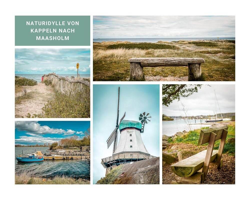 Eindrücke der Wanderung von Kappeln nach Maasholm am Ostseefjord Schlei