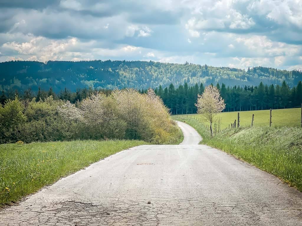 Wanderweg im Frankenwald auf dem Weg zur Ködeltalsperre