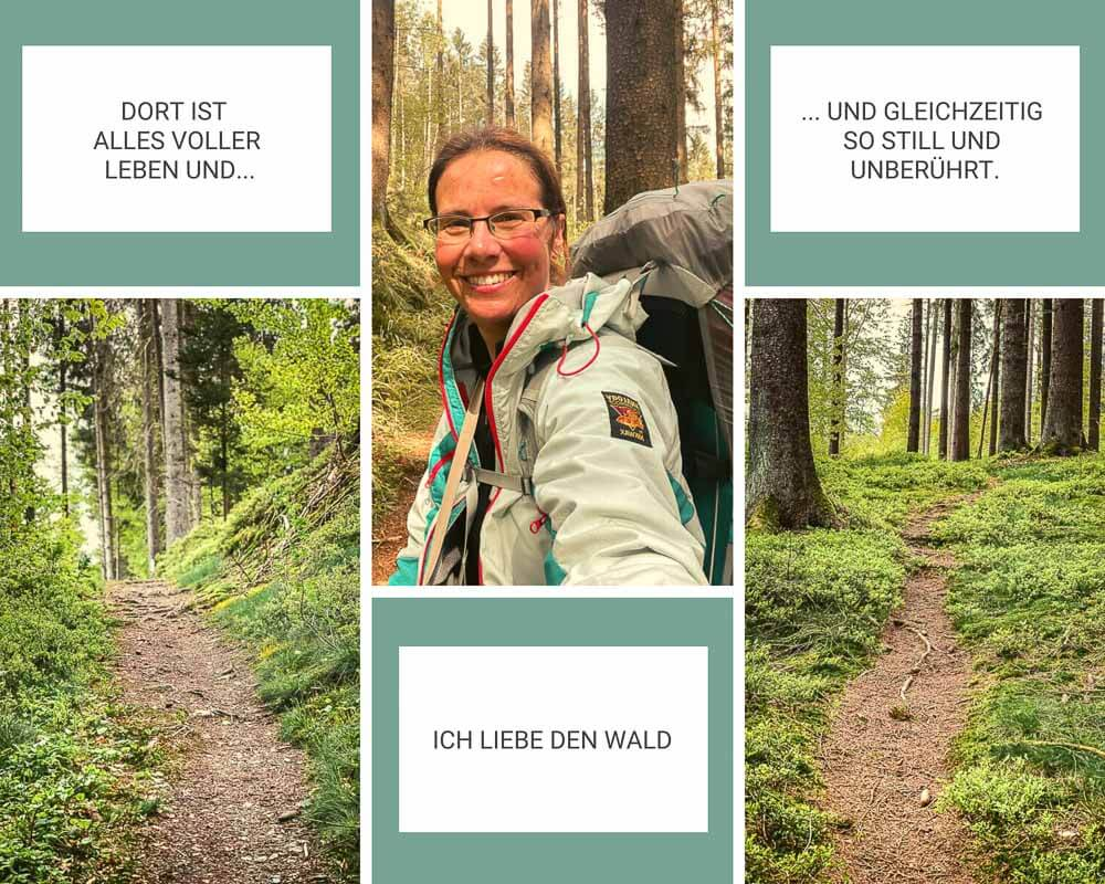 Couchflucht Trekking mit Zelt im Frankenwald auf Waldpfaden