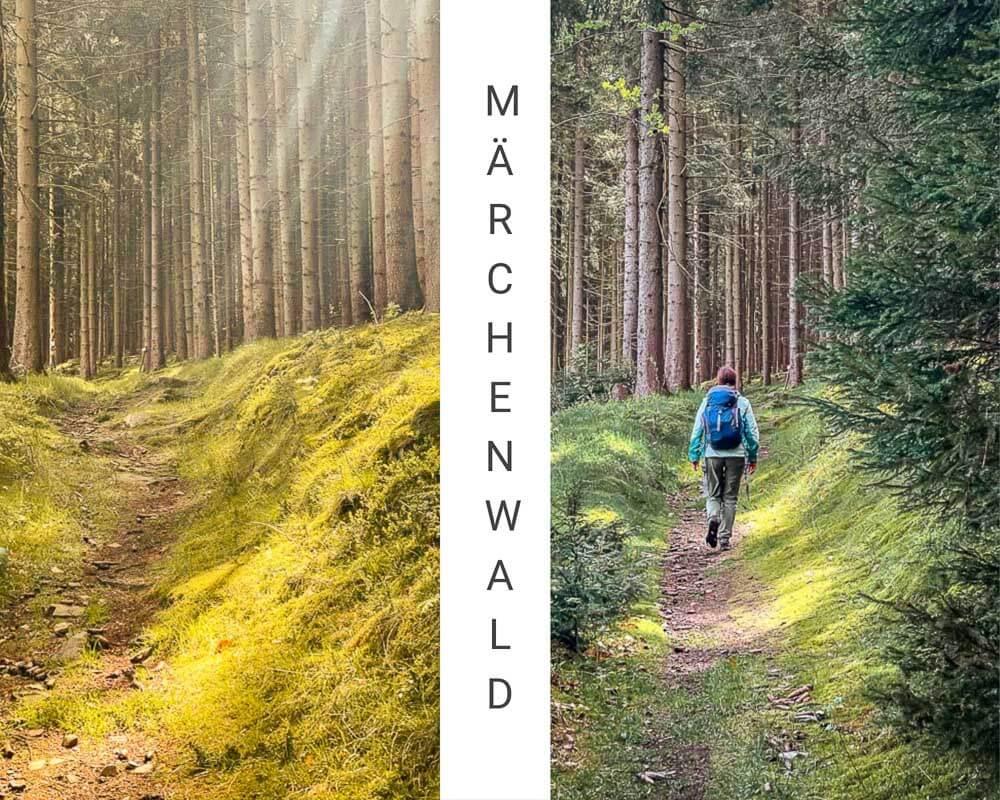Frankenwald wandern bei Bad Steben auf Waldpfaden