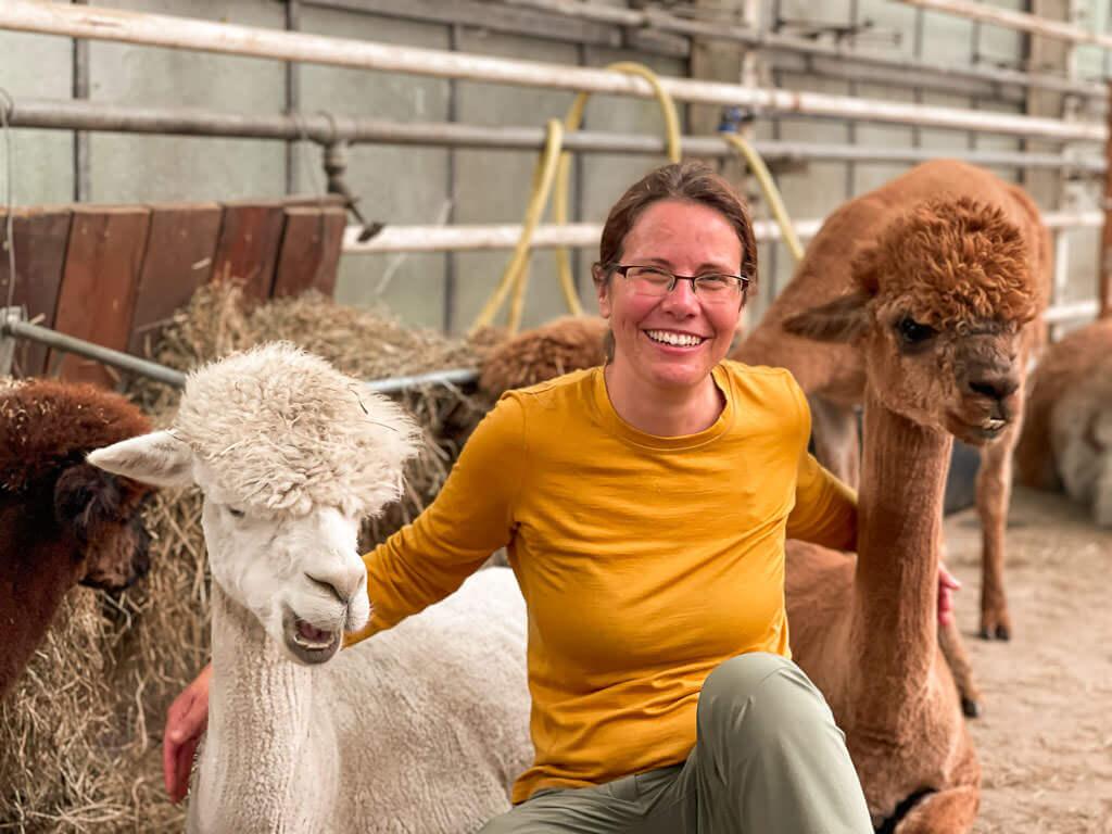 Couchflucht Sabrina Bechtold mit Alpakas im Stall von Daniels Kleiner Farm