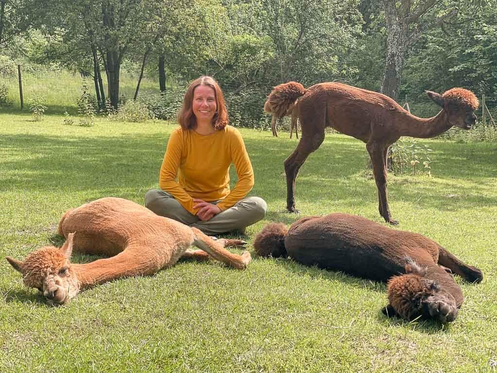 Couchflucht Sabrina Bechtold mit Alpakas auf der Weide von Daniels Kleiner Farm