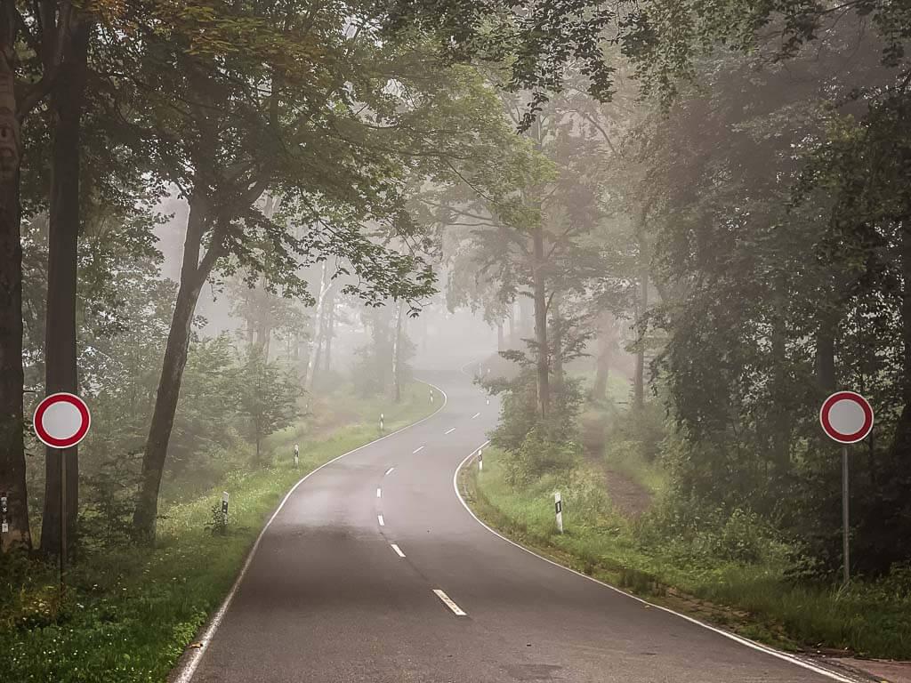 Straße zum Hermannsdenkmal in Detmold im Nebel