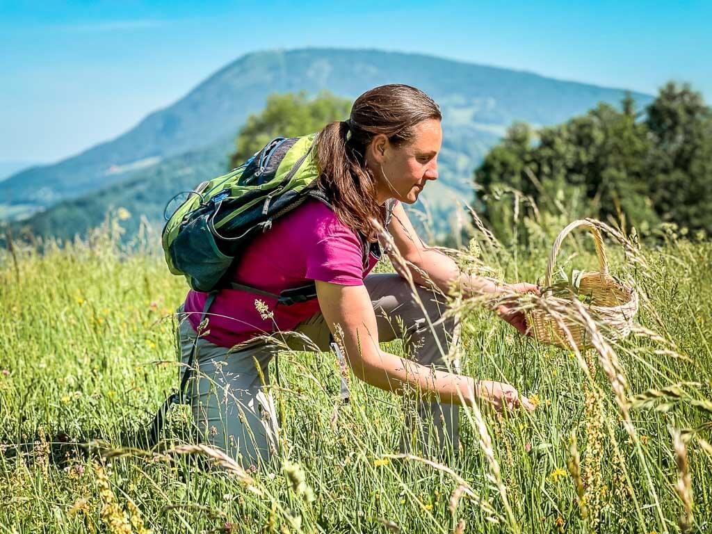 Salzburg Wildkräuterwanderung mit Almsinn an der Erentrudisalm