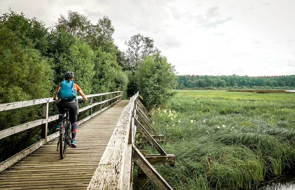 Mountainbike Tour an der Westerwälder Seenplatte am Dreifelder Weiher