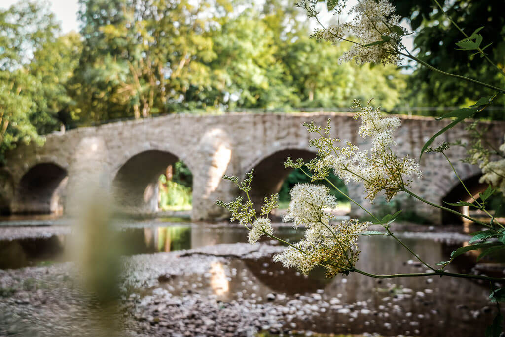 Steinbrücke über die Nister am Kloster Marienstatt