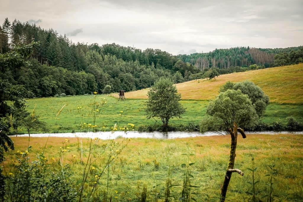 Wandern im Westerwald an der Nister in der Kroppacher Schweiz