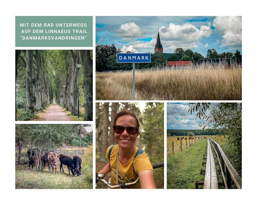 Radtour auf dem Linnaeus Trail Danmarksvandringen in Uppsala mit Couchflucht